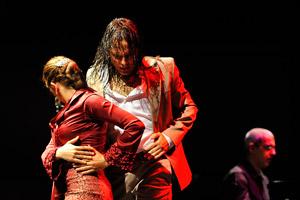 Ópera y Flamenco